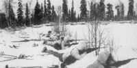 1944-45 Murmansk Siege (Hitler's World)