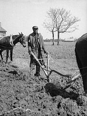 Sharecropper plowing loc