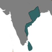 Ganga Khanchana I