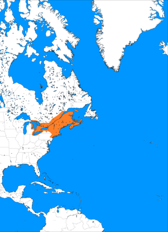 File:1350 Mass wars and expansion, by annexing and induction native tribe and continued high birth rates populttion reaches 2 million also capital is relocated to Thors Basin.png