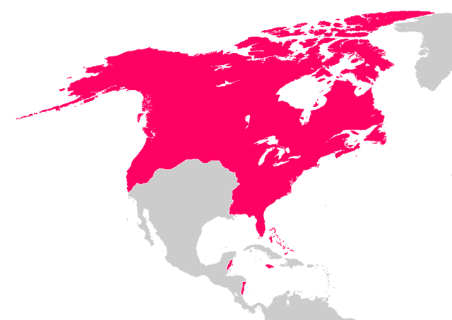 File:North America 2010.PNG