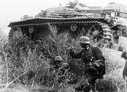 Bundesarchiv Bild 183-B28822, Russland, Kampf um Stalingrad, Infanterie (1)