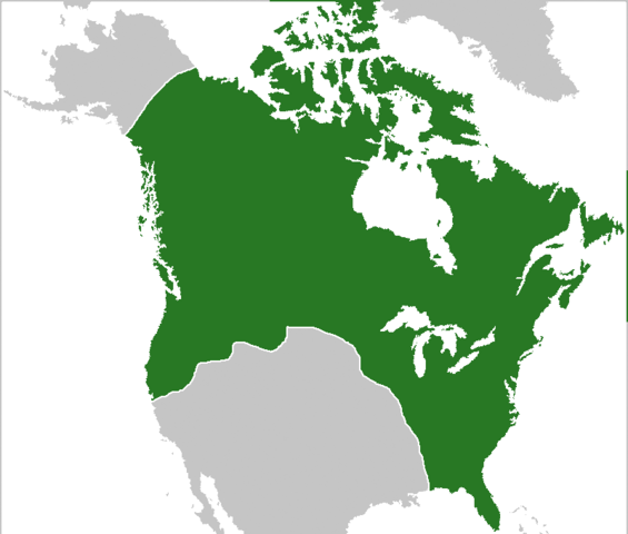 File:Commonwealth of America.png