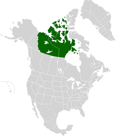 File:AMP Map of Canadian Republic VII.png