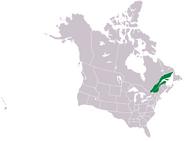 CNA lower canada