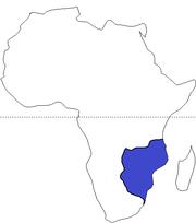 Zimbabwean Empire