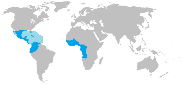 File:Aztec empire,after the african wars.png