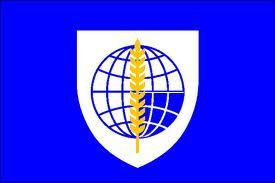 File:GUITO Flag.jpg