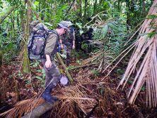 83DD photo Legion in Jungle