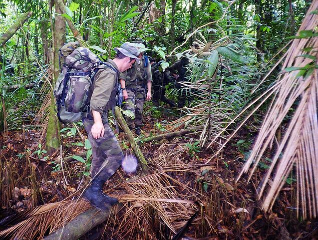File:83DD photo Legion in Jungle.jpg