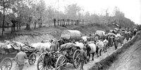First World War (Central World)