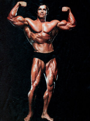 Arnold Schwarzenegger-1-