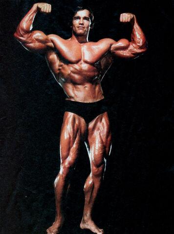 File:Arnold Schwarzenegger-1-.jpg