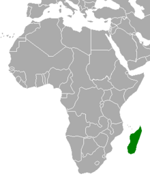 Location of Madagascar (Myomi)
