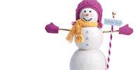 Snow Much Fun Set
