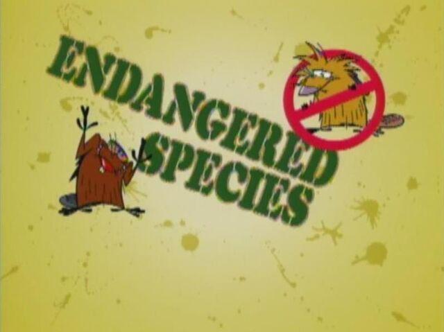 File:Endangered Species title card.jpg