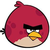 File:Big Brother bird terence.jpg