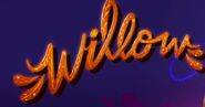 Willow Logo copy