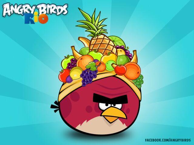 File:Fat Red Bird Rio.jpg