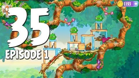 Angry Birds Stella Level 35 Walkthrough Branch Out Episode 1