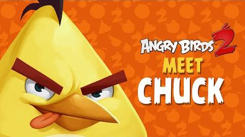 Angry Birds 2 – Meet Chuck Good With Wood!