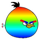 Rainbow Bird New