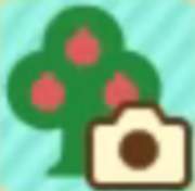 Photos with Animal Crossing Icon