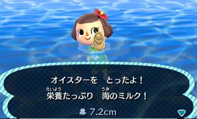 File:Diving creature.jpg