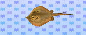 File:Ray (New Leaf crop).jpg