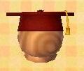 File:Scholar's Hat.JPG