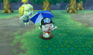 Player Falls, Isabelle Shocked in the Rain