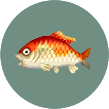 File:Koi (City Folk).png