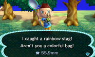 Rainbow stag beetle new leaf