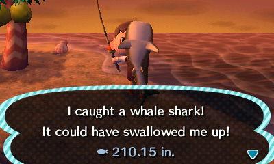 File:Whale Shark 2.JPG
