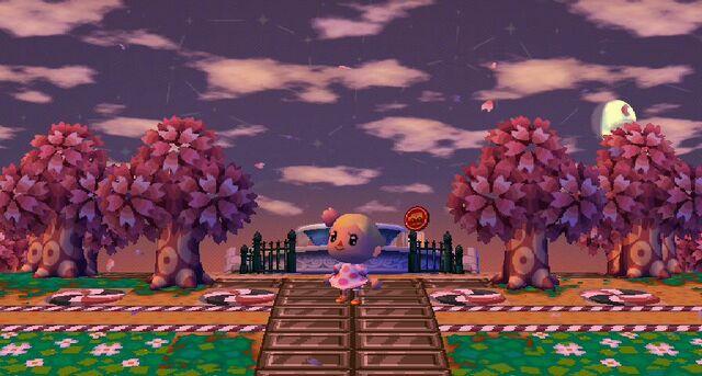 File:Cherry blossom fest.jpg