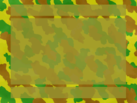 File:Camouflage-paper.png