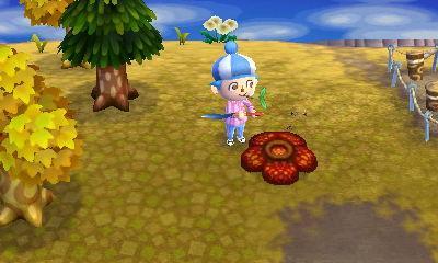 File:Rafflesia NewLeaf.JPG