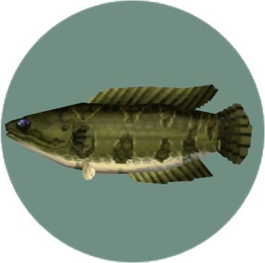 File:Giant Snakehead (City Folk).png