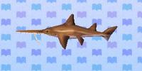 Saw shark