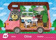 W Amiibo 45 Olive