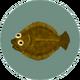 Olive Flounder (City Folk)