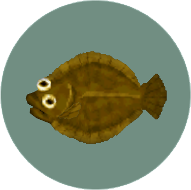 File:Olive Flounder (City Folk).png