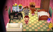 Fauna Sleeping In House