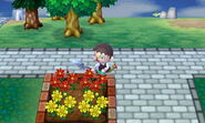 Flower Bed Dig Attempt