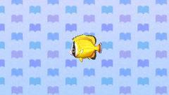 ButterflyfishNL
