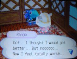 Sick pango
