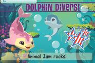 Jam-A-Gram Dolphin-Divers