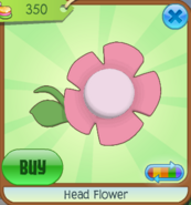 Shop Head-Flower Pink