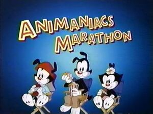 Animaniacs Marathon on Cartoon Network