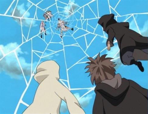 Spider Bind | Anime And Manga Universe Wiki | Fandom ... One Piece Luffy And Zoro And Sanji